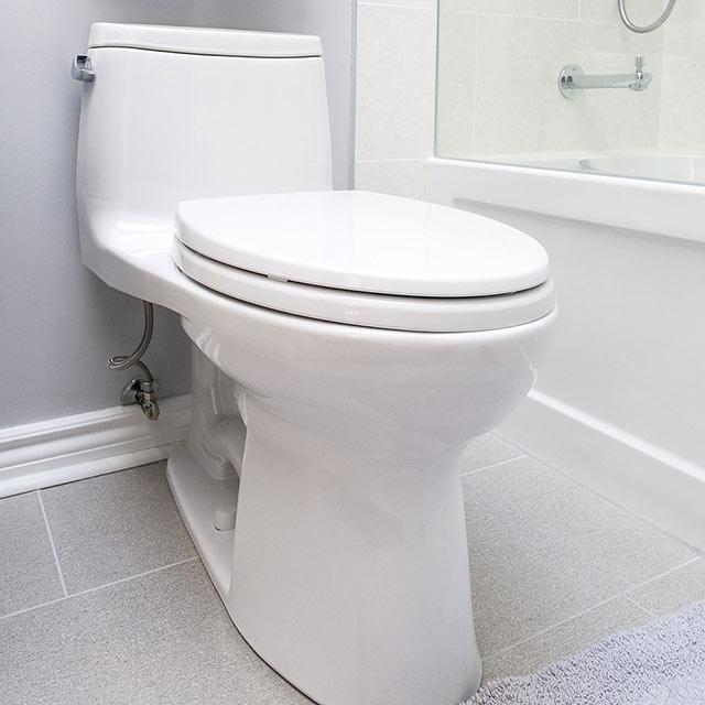 Bathroom plumbing parts online danco