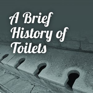 A Brief History of Toilets